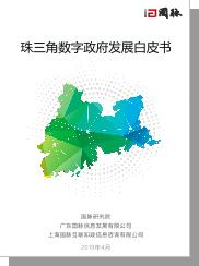 2019珠三角数字政府发展白皮书