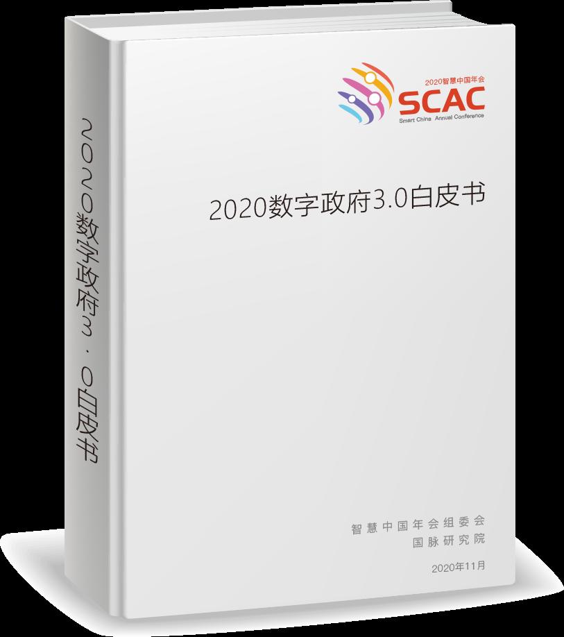 2020数字政府3.0白皮书
